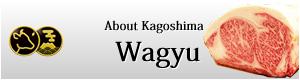 About Kagoshima Wagyu