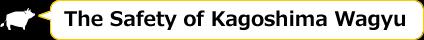 The Safety of Kagoshima Wagyu